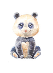 watercolor panda isolated. Pretty cute pet. Zoo illustration.