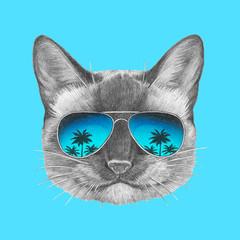 Portrait of Siamese Cat with mirror sunglasses. Hand drawn illustration.