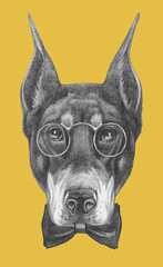 Portrait of Doberman Pinscher with glasses and bow tie. Hand drawn illustration.