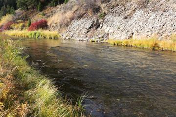 Wall Mural - Mountain River in Idaho