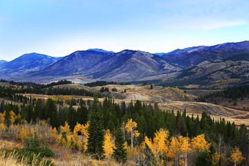 Fototapete - Fall Colors in Mountain Scenic