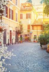 typical italian street in Trastevere with sunshine at spring day, Rome, Italy