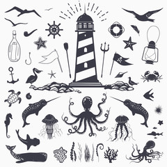 Big set of marine animals: cachalot, shark, octopus, jellyfish, starfish, seahorse, crab, seagulls isolated on white vector nautical illustration