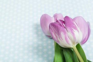 Tulips on desk.