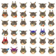 Maine Coon Cat Emoji Emoticon Expression