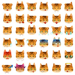 Bengal Cat Emoji Emoticon Expression