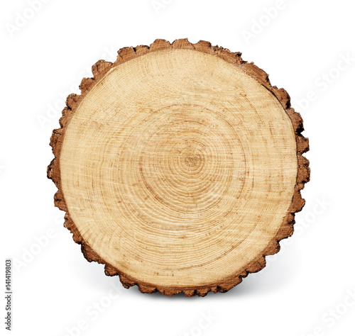 Wooden Stump Isolated On The White Background Round Cut Down Tree With Annual Rings As
