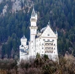 Neuschwanstein castle in the Bavaria Alps - Tirol, Germany