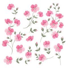 Set of Linen flowers elements. Collection of flower elements isolated on white background. Elegant spring flowers bundle. Vector illustration.