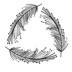 rustic feathers decoration design