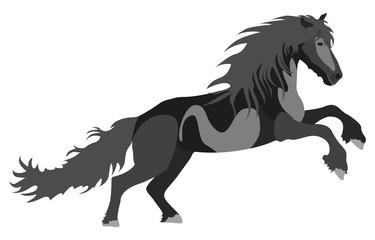 Illustration black Horse