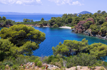 Amazing scenery by the sea in Sithonia, Chalkidiki, Greece