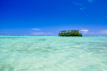 Stunning view of Motu Taakoka, a small island in the lagoon of Rarotonga near Muri Beach. Cook Islands in the South Pacific Ocean, Clear, shallow, water, small island with palm trees, copy space.  Wall mural