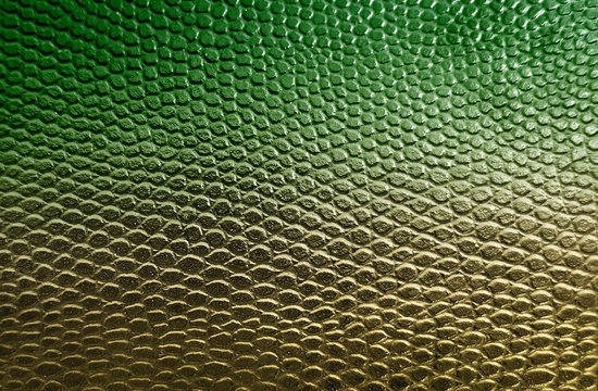 Green snake skin texture background