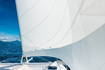 Spoed Foto op Canvas Zeilen Sailing yacht catamaran sailing in the sea. Sailboat. Sailing.