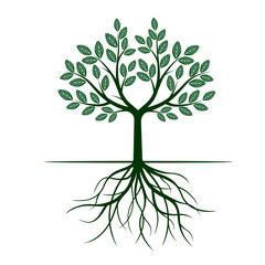 Green Tree with Leafs and roots. Vector Illustration.