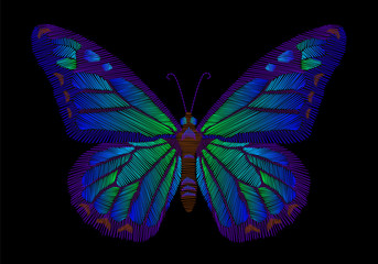 embroidery butterfly design for clothing. insect vector decoration.