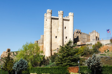 Castillo de Coyanza. Valencia de Don Juan, León, España.