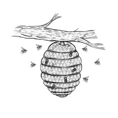 Vector sketch of beehive
