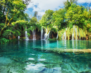 Wall Murals Waterfalls A photo of fishes swimming in a lake, taken in the national park Plitvice, Croatia