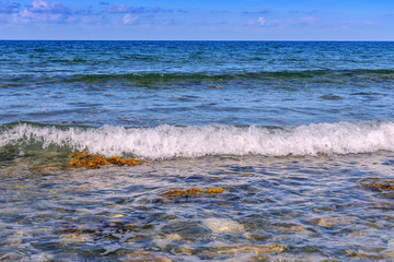 sea, wave, summer