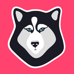 Husky dog sticker. Black and white dog fase logo. Emblem for patch. Sign or icon for mobile apps. Creative vector illustration isolated on pink background.