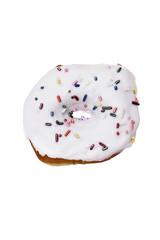 Isolated Vanilla Donut