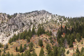 Fototapete - Rugged Mountain Peak with Fall Colors