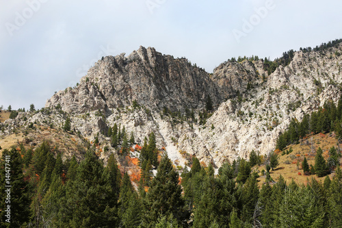 Wall mural Rugged Mountain Peaks with Fall Colors