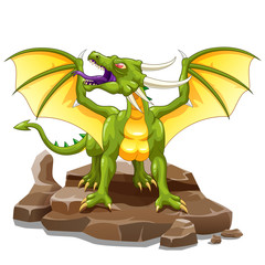 Beautiful dragon on a white background. Vector illustration