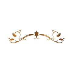 Swirl decorative lines icon vector illustration graphic design