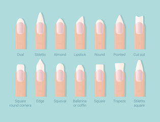 Different shapes of nails. Professional female manicure. Nails trends. Vector illustration.