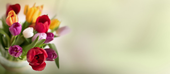 Abstract spring background with tulips