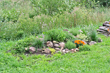 Rock garden with stones and flowers
