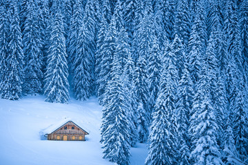 Wall Mural - Traditional mountain cabin in winter wonderland in the Alps