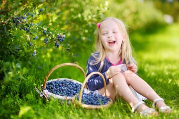 Cute little girl picking fresh berries on organic blueberry farm on warm summer day