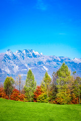 landscape with mountains und trees. Amazing view of mountain