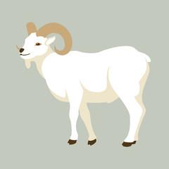 goat  vector illustration style Flat