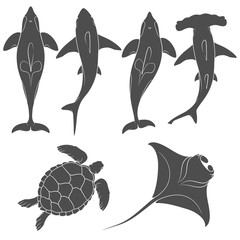 Set of images with marine animals. Vector black and white isolated objects on white background.