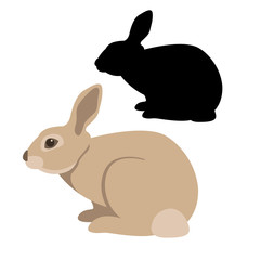 rabbit vector illustration style Flat set silhouette