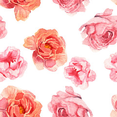 watercolor illustration of flower pink peony on white background