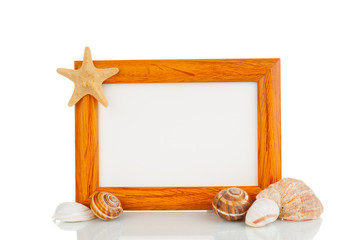 Picture frame with shells on white background