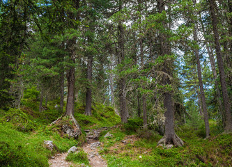 Adolf Munkel trail - famous tourist route in Dolomite Alps, Italy