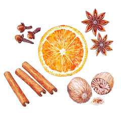 Ingredients for mulled wine.  Watercolor.