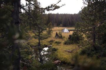 Tent near stream in meadow