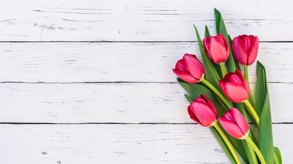 Tulpen Rot Blumen Strauss Frühling Ostern Holz Hintergrund weiss