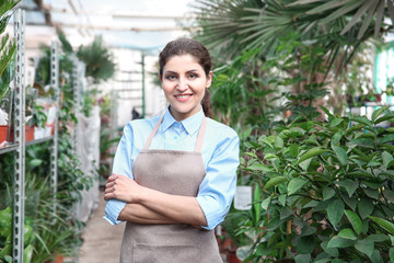 Beautiful woman florist standing in greenhouse