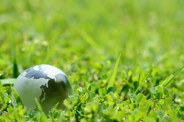 ガラスの地球儀と緑色の草