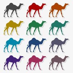 Camel Icon Flat Graphic Design - Illustration