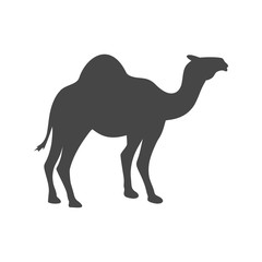 Camel black silhouette vector - Illustration